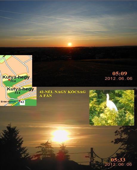 http://napcsillag.hupont.hu/felhasznalok_uj/2/1/212921/kepfeltoltes/2012_juni_06_-_hajnal_42_nagy_kocsag.jpg?30183904