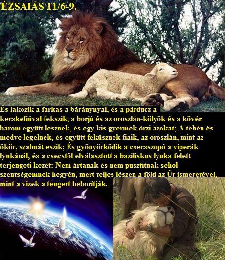 http://napcsillag.hupont.hu/felhasznalok_uj/2/1/212921/kepfeltoltes/kicsi/oroszlan_es_a_barany000.jpg?51518540
